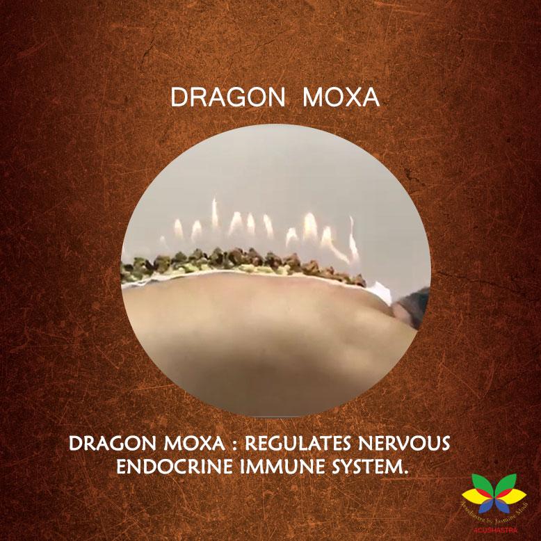 Dragon Moxa